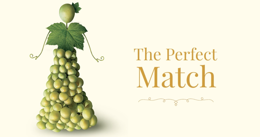 The Perfect Match! – Promo 2019